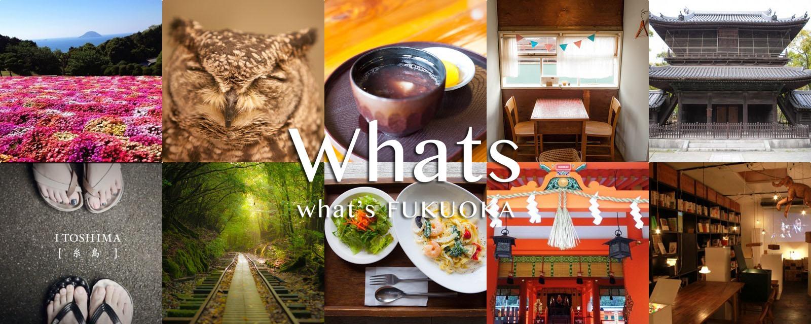 福岡 国際交流 Whats Fukuoka -