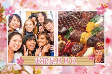 Internatinal BBQ & Hanami 2017
