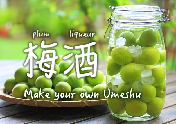 Let's make Umeshu